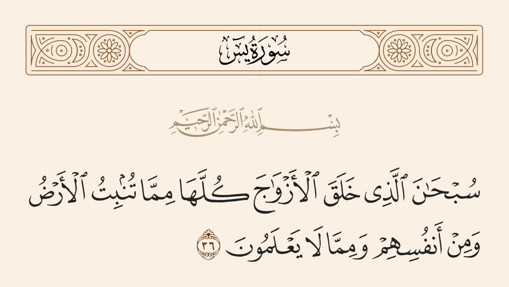سورة 36 الآية رقم  يس