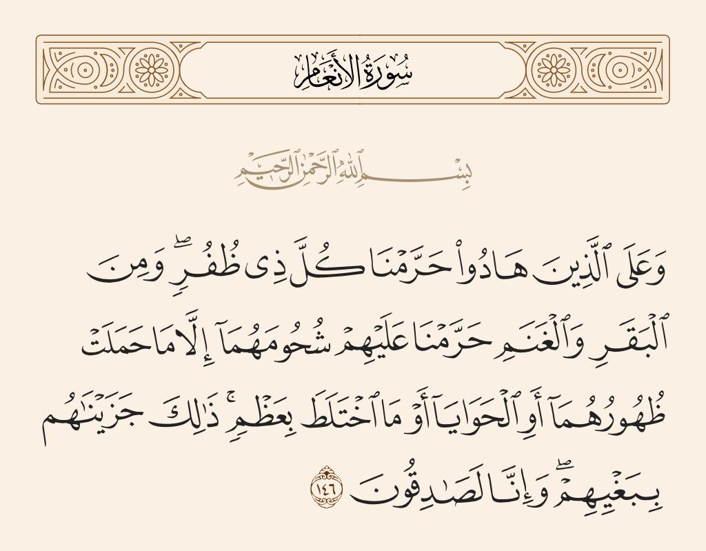سورة  الأنعام الآية رقم 146