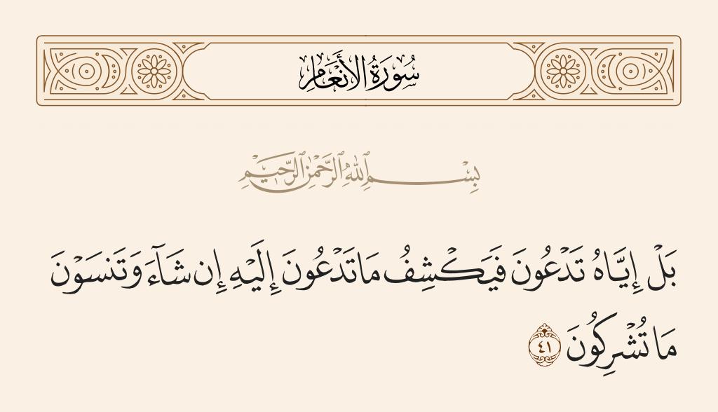 سورة  الأنعام الآية رقم 41