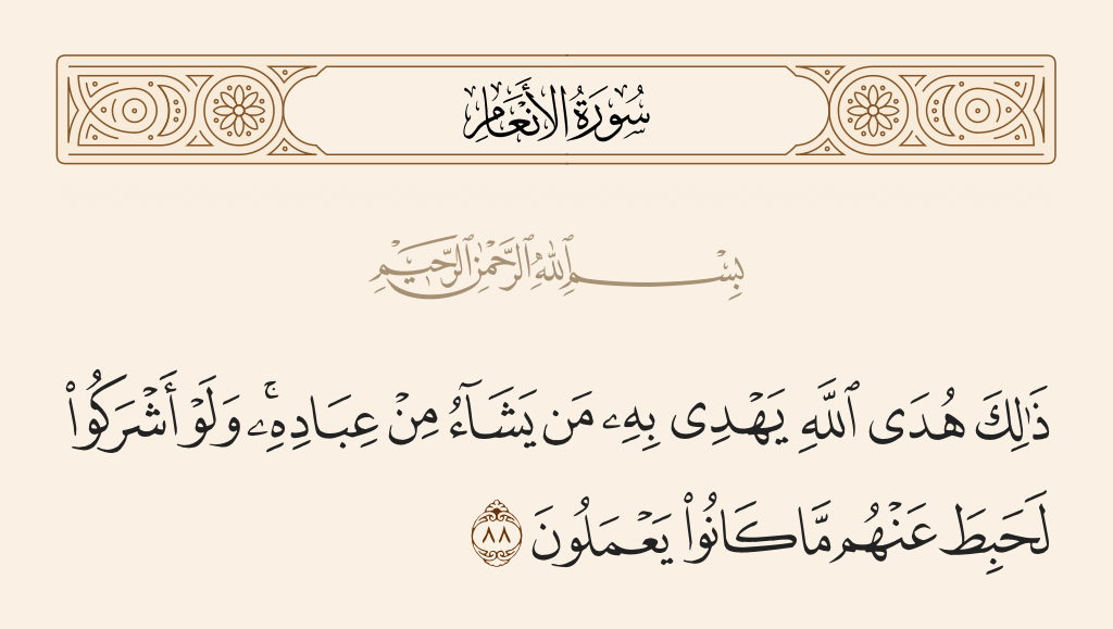 سورة  الأنعام الآية رقم 88