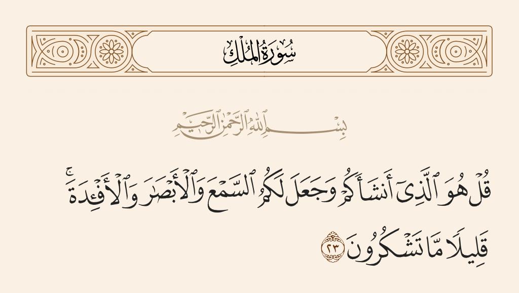 سورة  الملك الآية رقم 23
