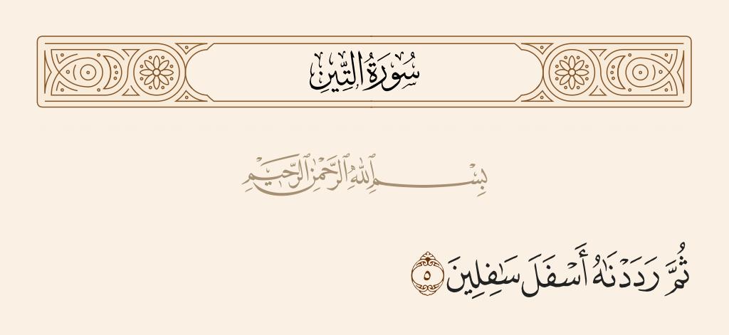 سورة  التين الآية رقم 5