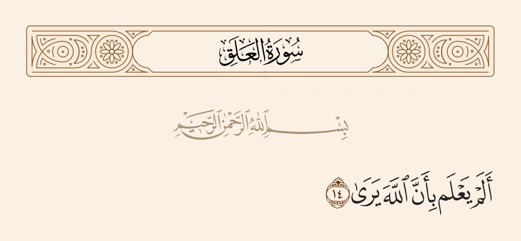 سورة  العلق الآية رقم 14