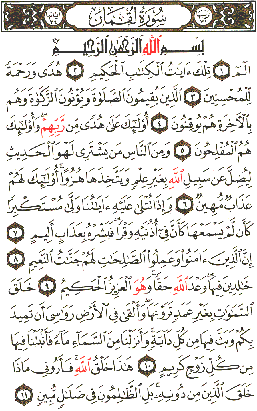 Page No 411  The Noble Quran