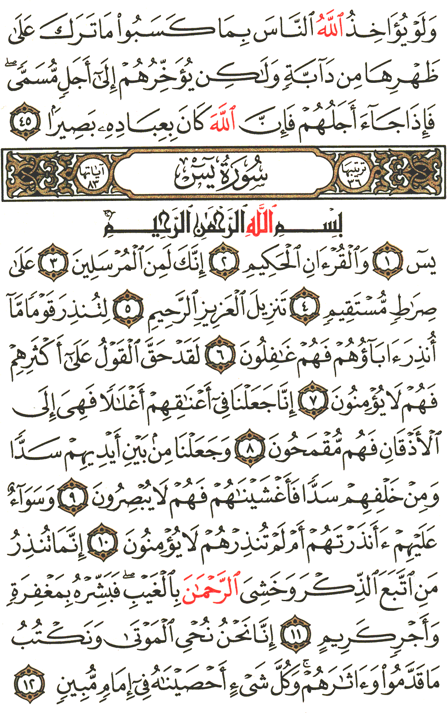 Page No 440  The Noble Quran