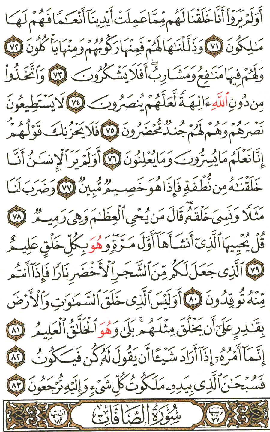 Page No 445  The Noble Quran