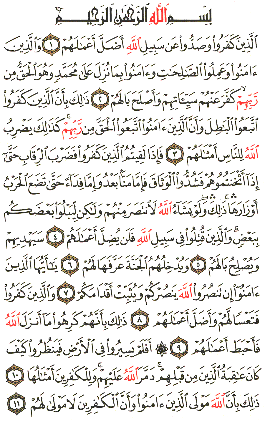 Page No 507  The Noble Quran