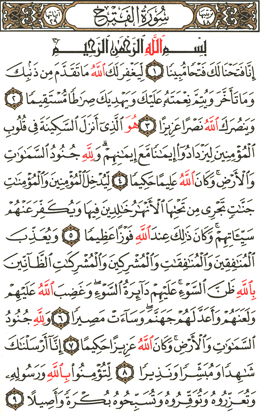 Page No 511  The Noble Quran